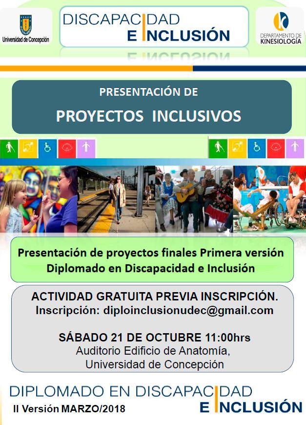 afiche proyectos inclusivos